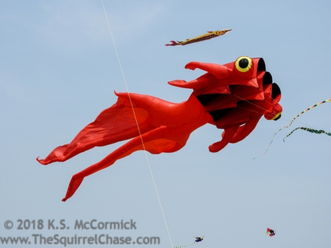 Kite at Weifang International Kite Festival, China/
