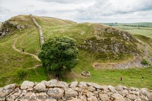 KSM-20180617-Hadrians_Wall-Day12-05