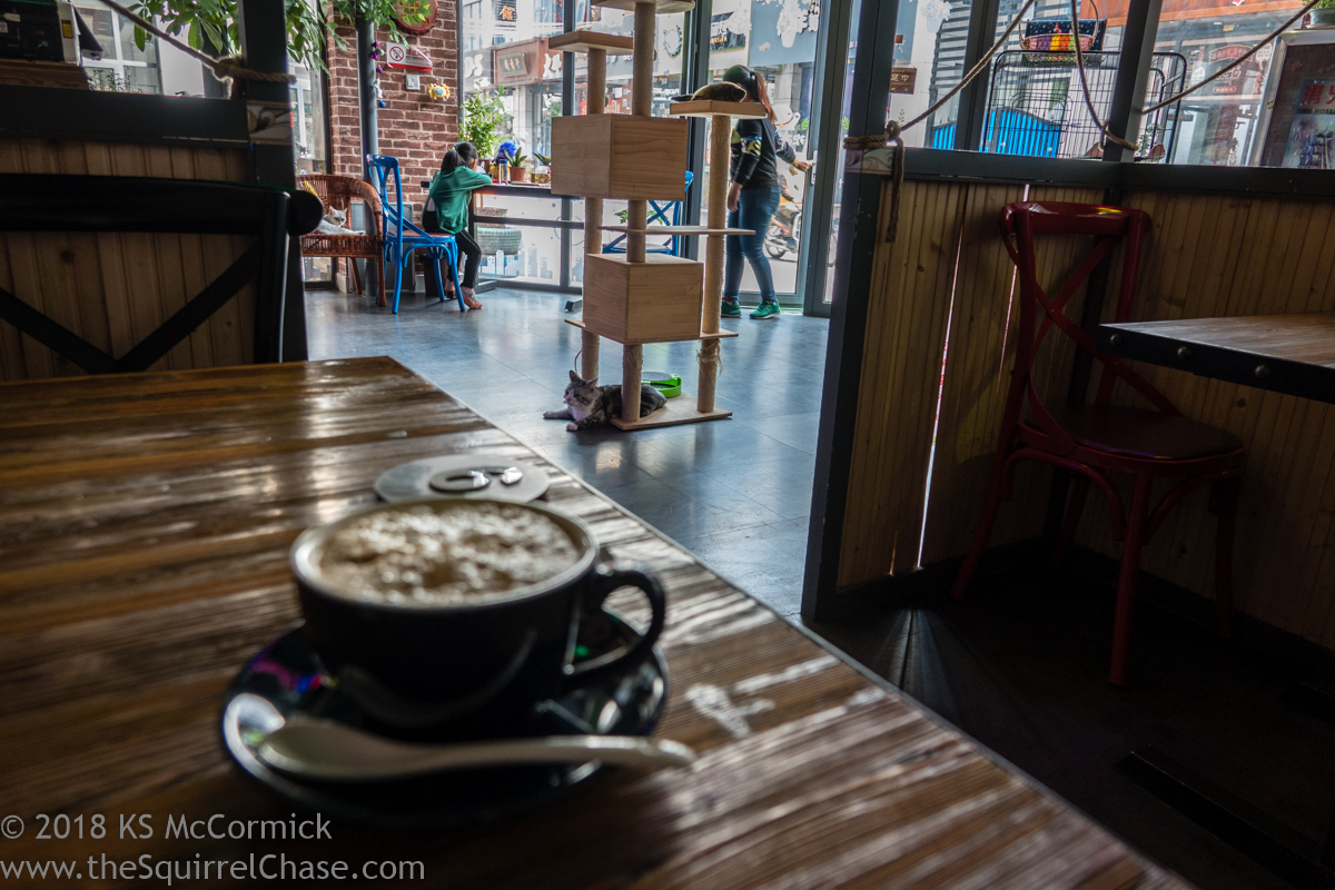 20181007-Coffee_Share-03