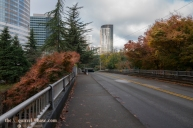 Freeway Park is a pleasant way to cross over I5 which runs through downtown.