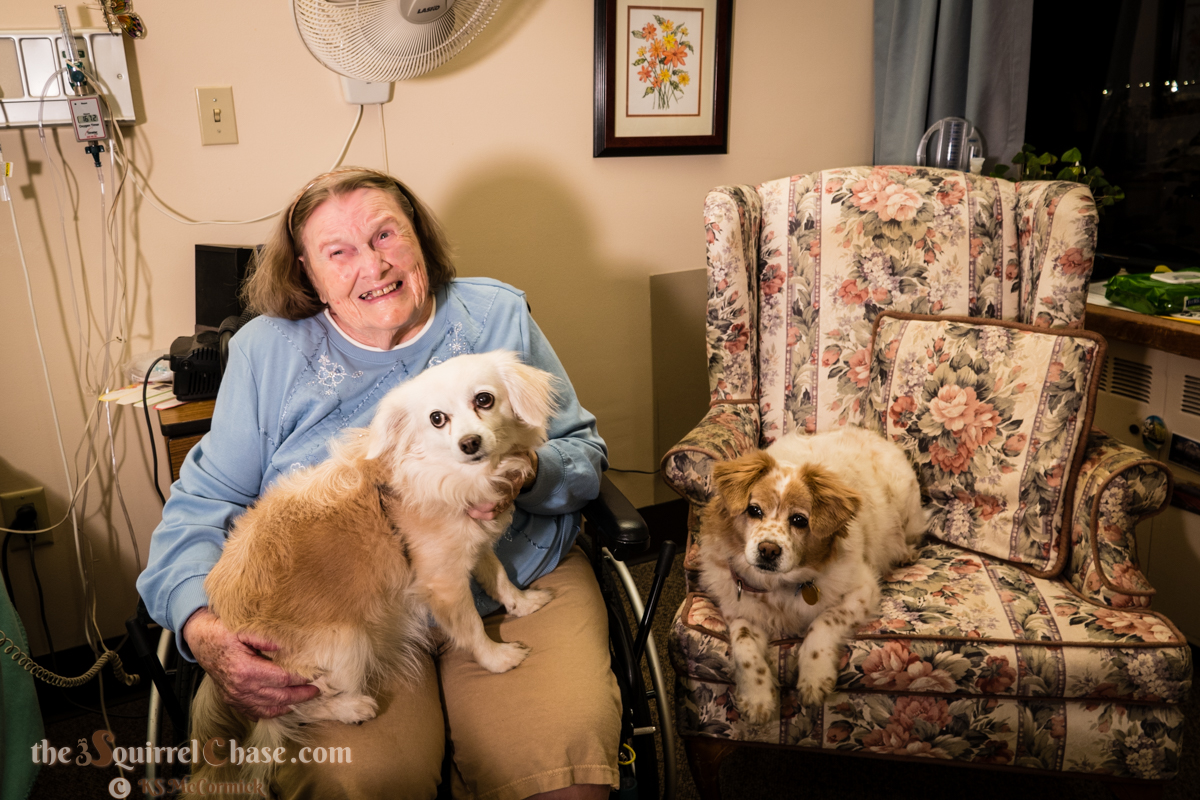 Woman in a wheel chair with one dog in her lap and one on the armchair beside her.
