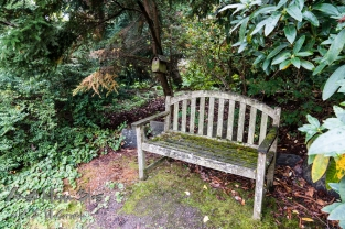 A teak bench in a shady nook.