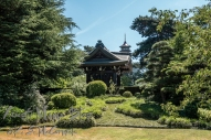 Pagoda and Japanese Garden at Kew Gardens.