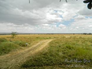 ksm20120213-masai_mara_roads-01