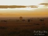 ksm20120215-masai_mara_roads-04
