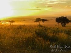 ksm20120215-masai_mara_roads-05
