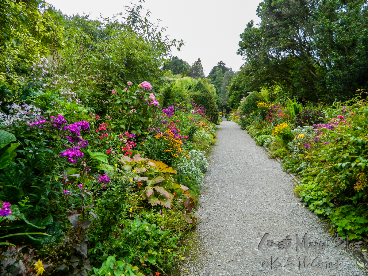A many flowered border garden on Gar Inish in County Kerry, Ireland