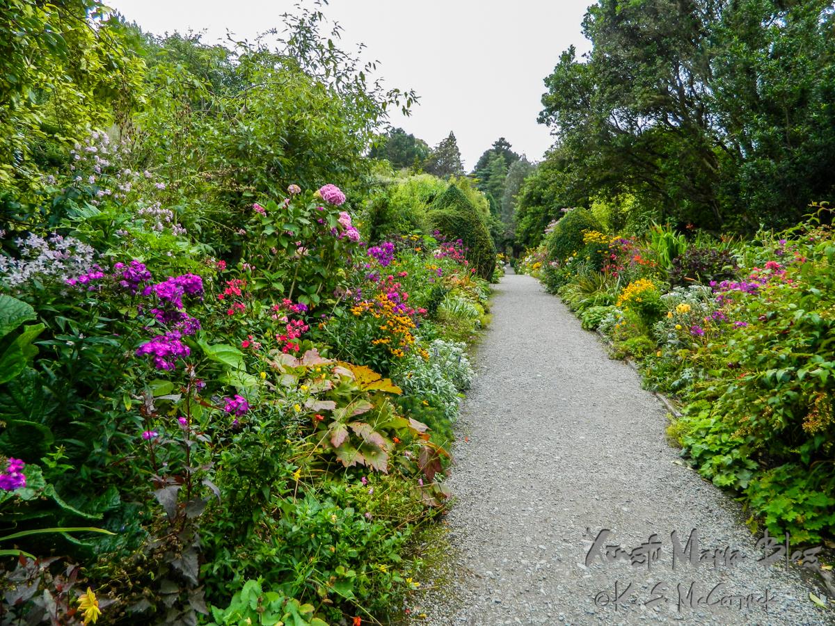 A many flowered border garden on Gar Inish in County Kerry, Ireland