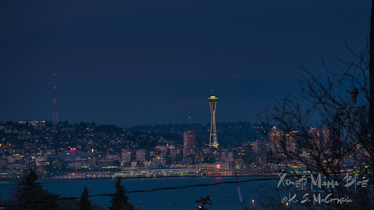 Early evening cityscape of Seattle as lights start to turn on.