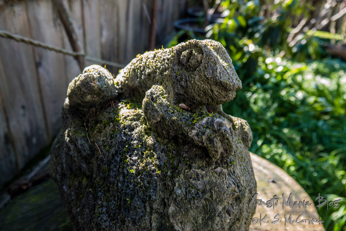 Pumice stone carving of a frog, with moss starting to grow in the indents of the stone.
