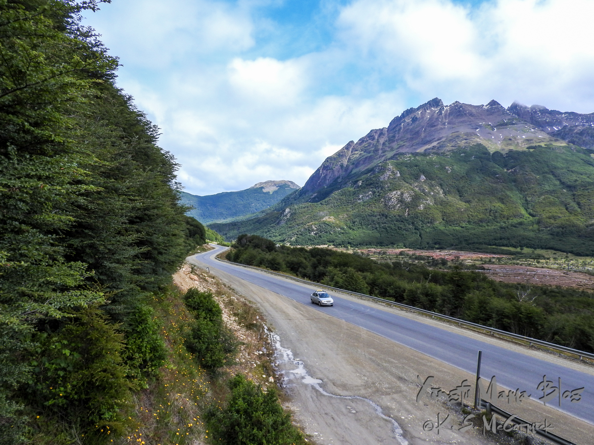 Smooth blacktop road beside red peat bogs that curves away between Tierra del Fuego Mountains.