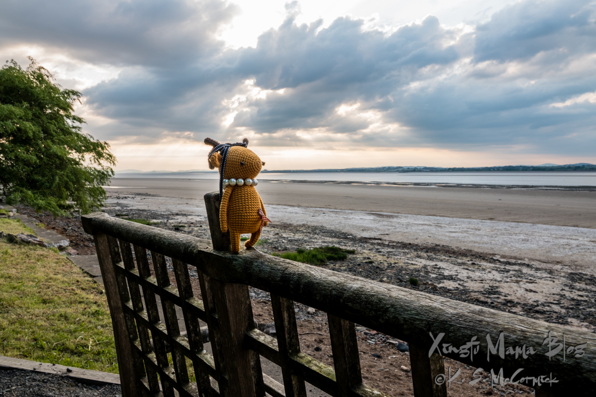 Amie Lu, a toy deer on a fence with Solway Firth in the background.