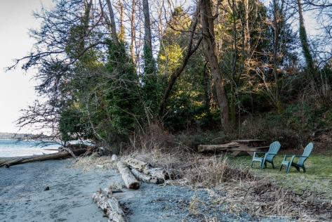 Two plastic Adirondack chairs and a mossy picnic table a few feet from the beach.