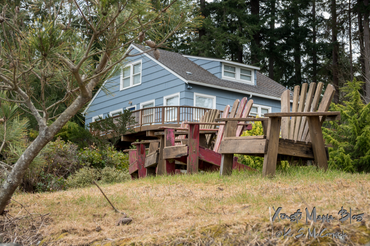 Four weathered Adirondack chairs by a blue house on Vashon Island.
