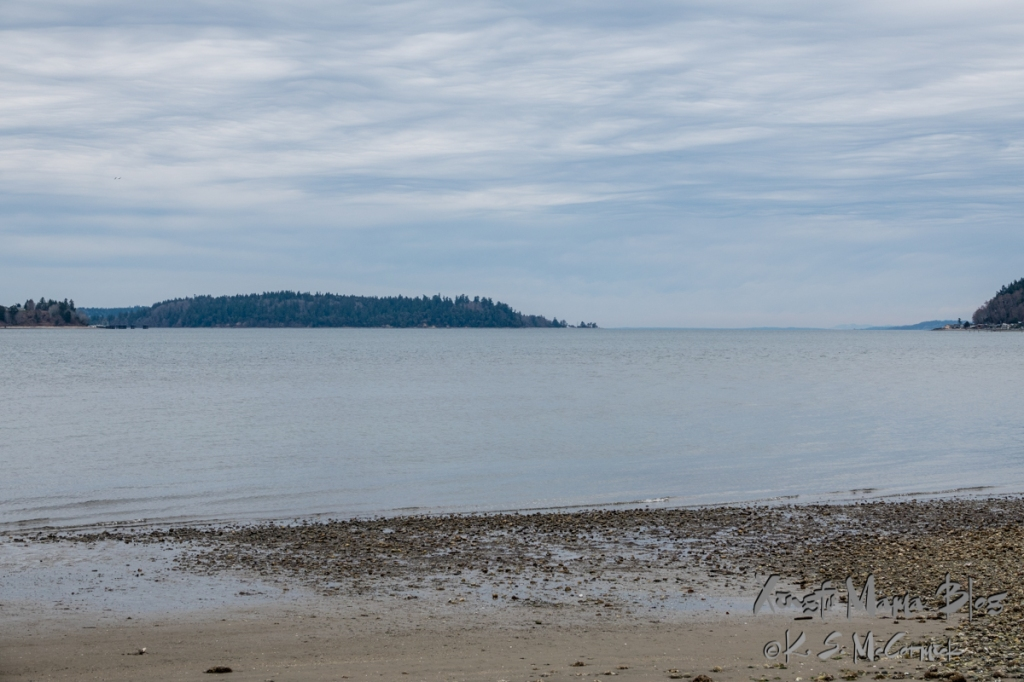 View facing north along Puget Sound, Blake Island and the Southworth Ferry Terminal are toward the left of the picture.