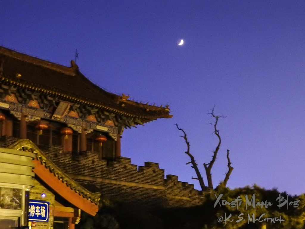 Dai Miao Temple gate at night with tree and crescent moon.