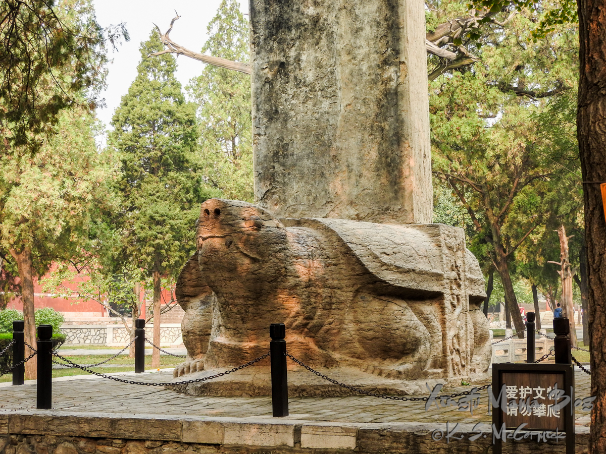 An ancient bixi, stone turtle with a stele on it's back, at Dai Miao Temple, Tai'an, China.