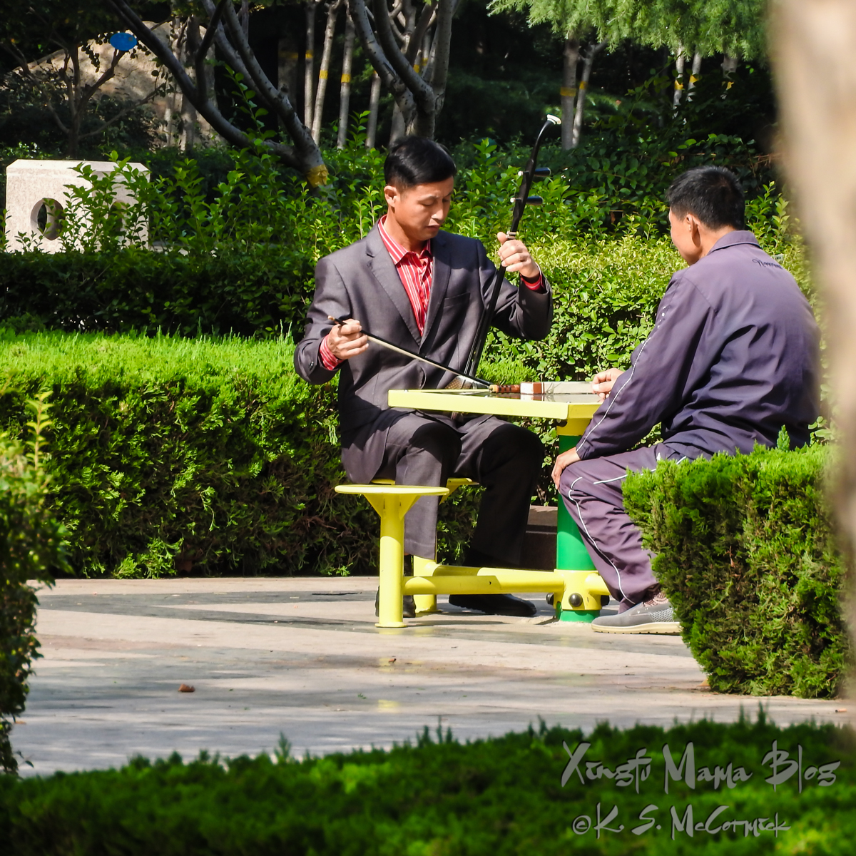 Man playing an erhu sitting at a table in a park.
