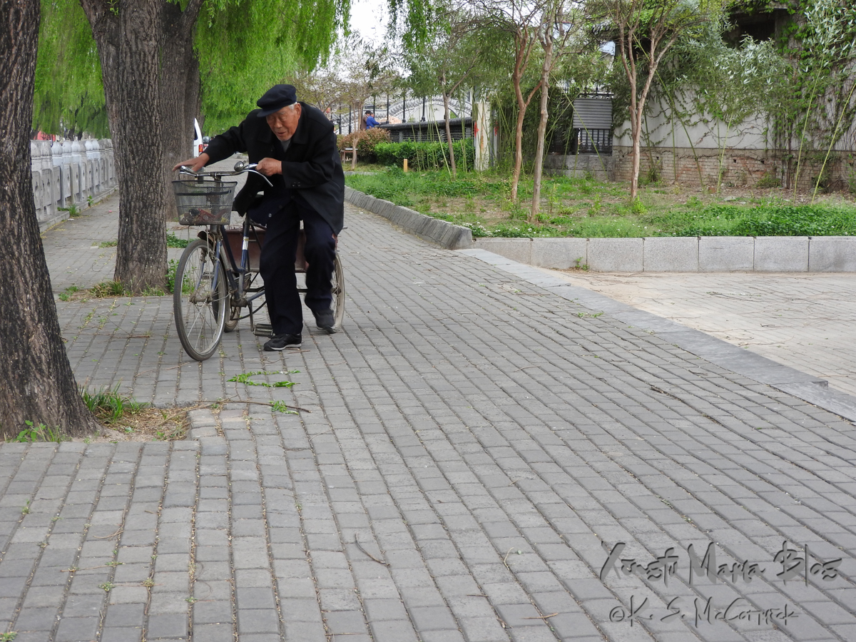 An old man with his tricycle collecting sticks on the walkway beside the moat in Qufu.