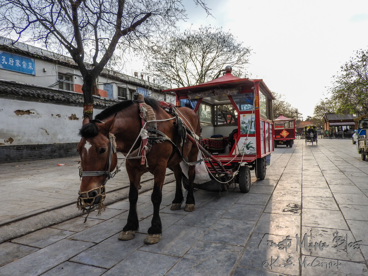Horse and horse drawn carriage on a nearly empty street in Qufu, Shandong Provence, China.