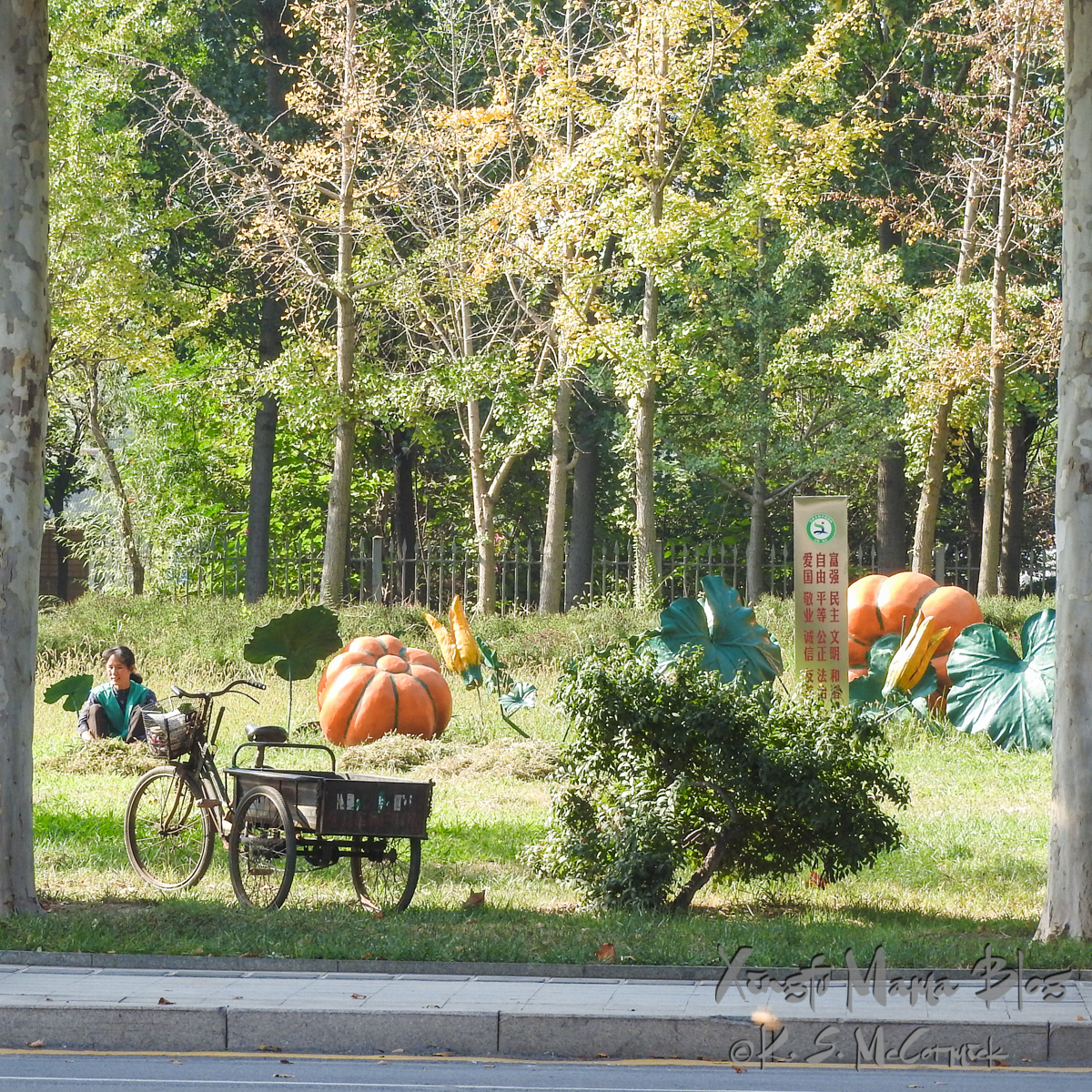 Woman sitting in the grass beside a sculpture of a pumpkin, including vine and blossoms, her three wheeled work trike is in the foreground.