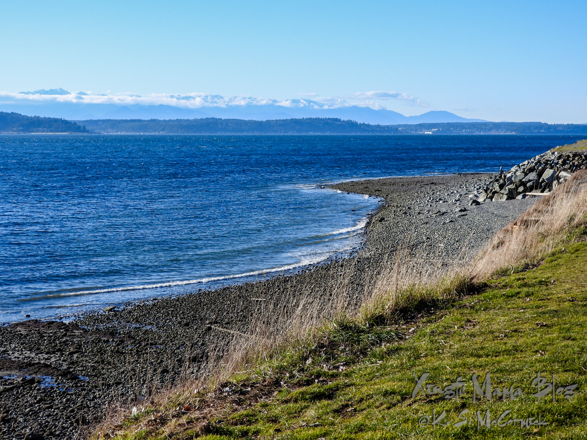View of beach and Puget Sound.