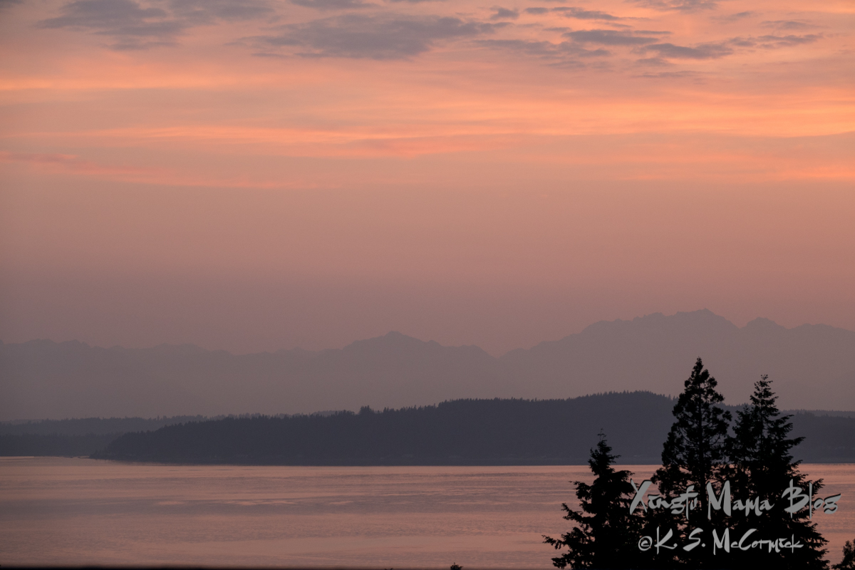 At dusk the sky and water of Puget sound are shades of apricot, peach and coral. There are silhouettes of pine trees and island and, more faintly, the Olympic Mountains.