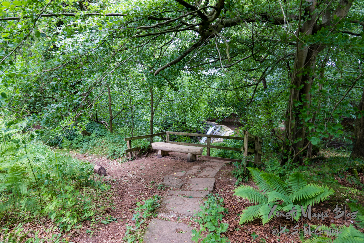 A simple bench made from a log beside a waterfall along Hadrian's wall path between Crosby-on-Eden and Lanercost Abbey, Cumbria, England.