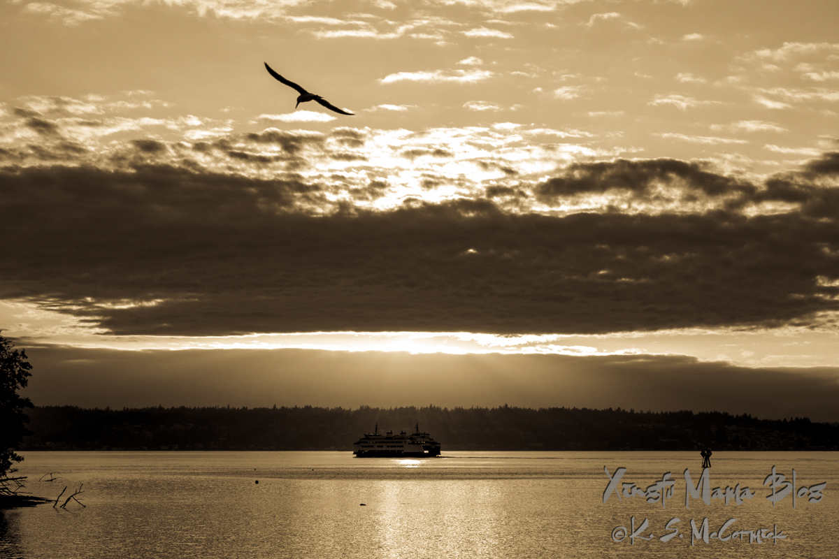 Black and white photo of a ferry chugging from Southworth on the Kitsap Peninsula toward Vashon Island in Puget Sound as the sun sinks through clouds. A tern is soaring in the sky. Washington State.