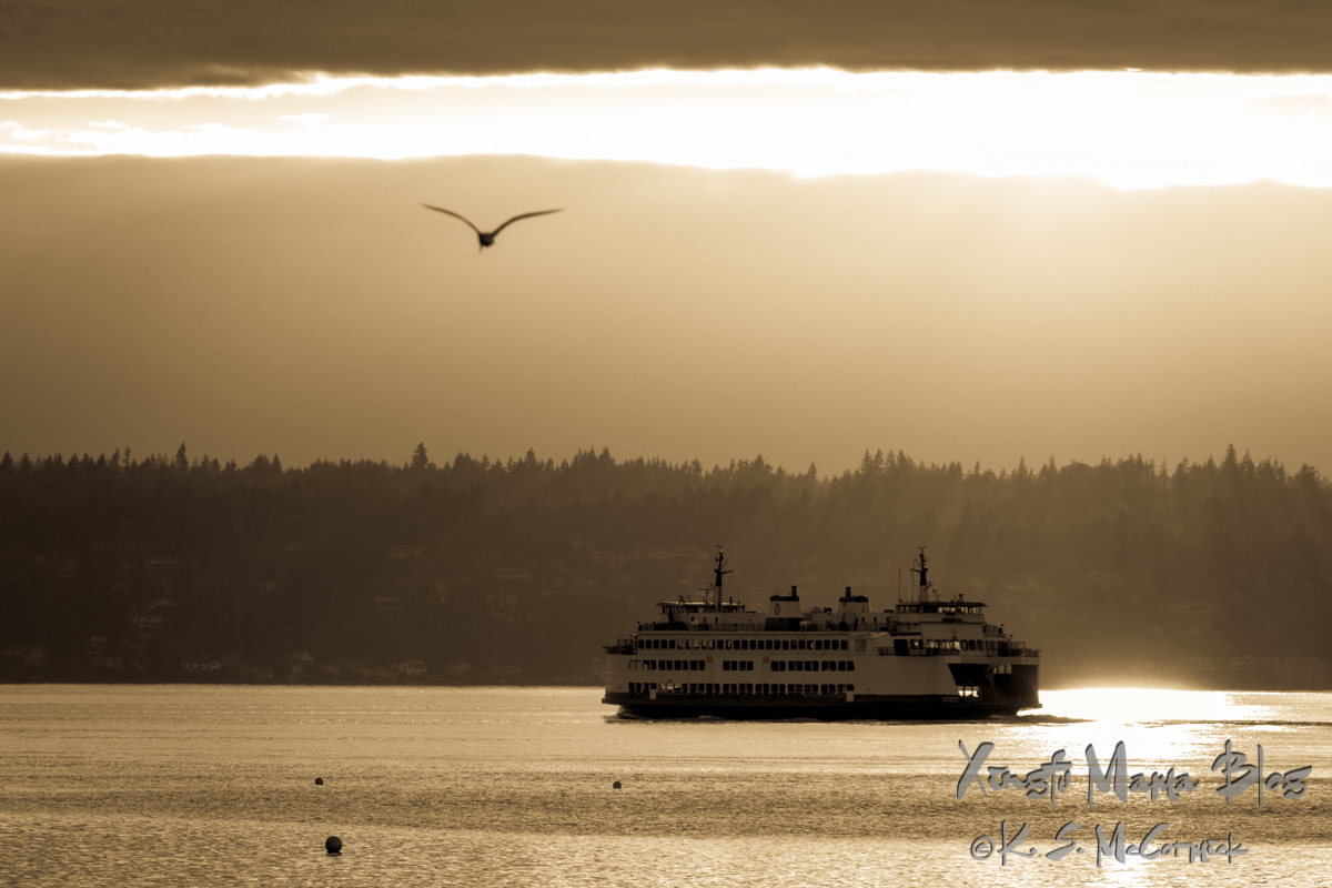 Black and white photo of a ferry chugging from Southworth on the Kitsap Peninsula toward Vashon Island in Puget Sound as the sun sinks through clouds. A tern is soaring in the sky and crab pot buoy are visible in the foreground. Washington State.