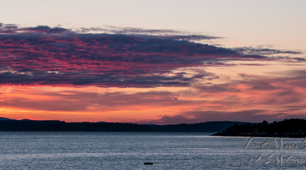 Pink, yellow and orange clouds at sunset on Puget Sound, facing north-northwest at Emma Schmitz Viewpoint park in West Seattle, Washington State.