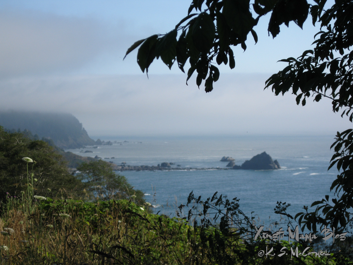 Misty view toward the Pacific Ocean framed by the cliffs and rocks along the shore of California.