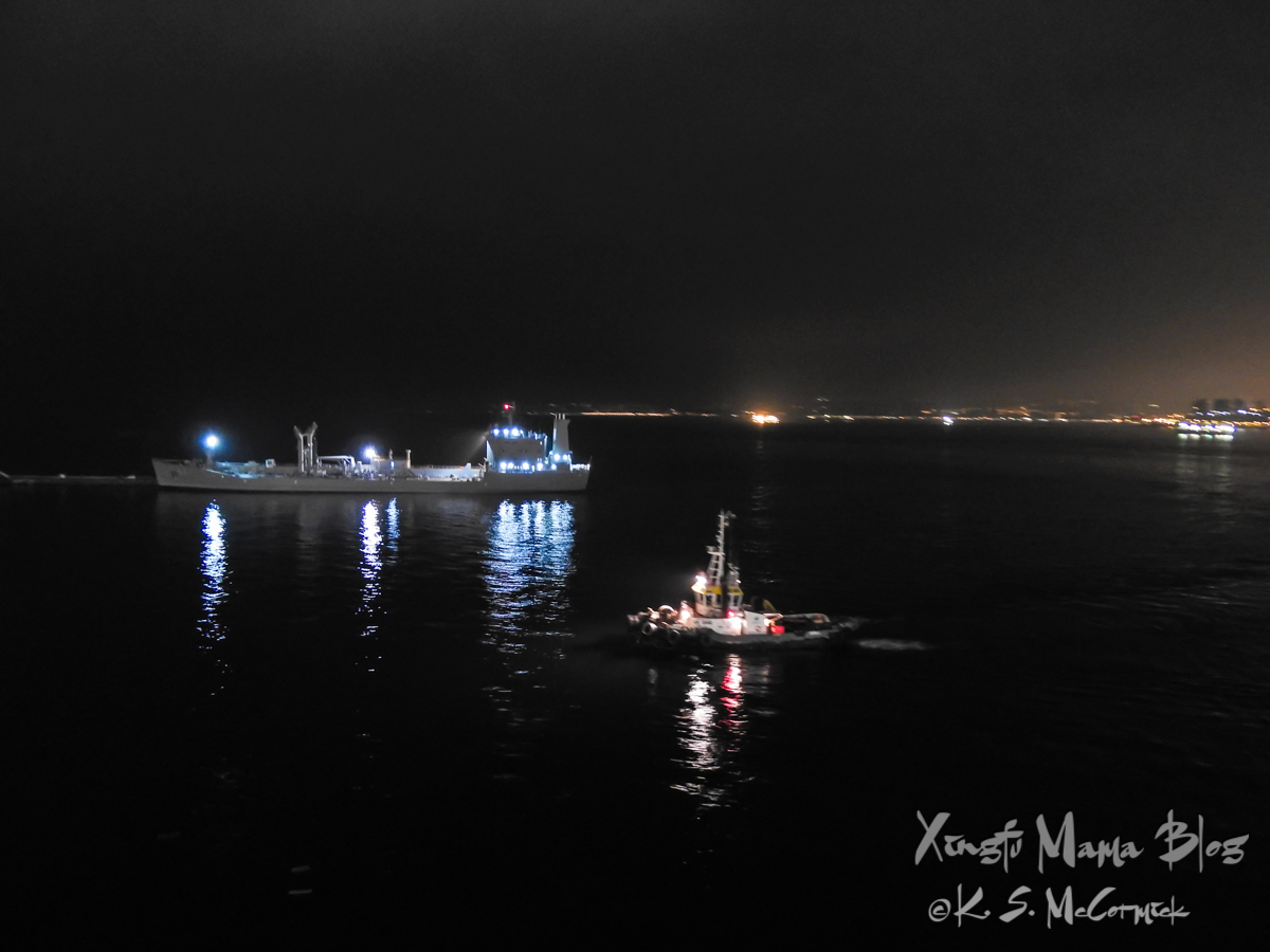 Night view of the harbor at Valparaiso, Chile.