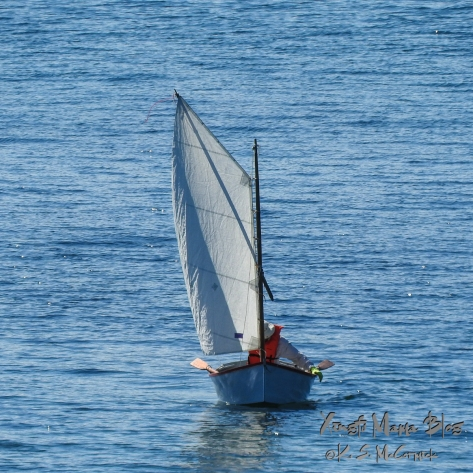 Blue skiff sailing on blue water.