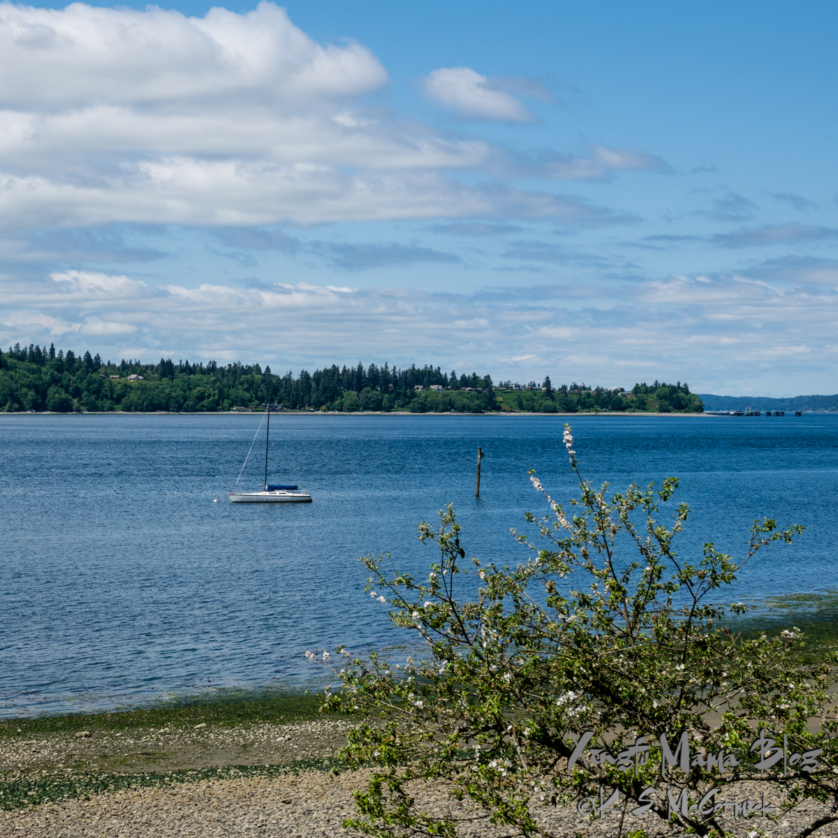 Blue sky...with some white clouds and a blue Puget Sound with a sailboat. View from Vashon Island toward the Southworth Ferry Dock on Kitsap Peninsula.