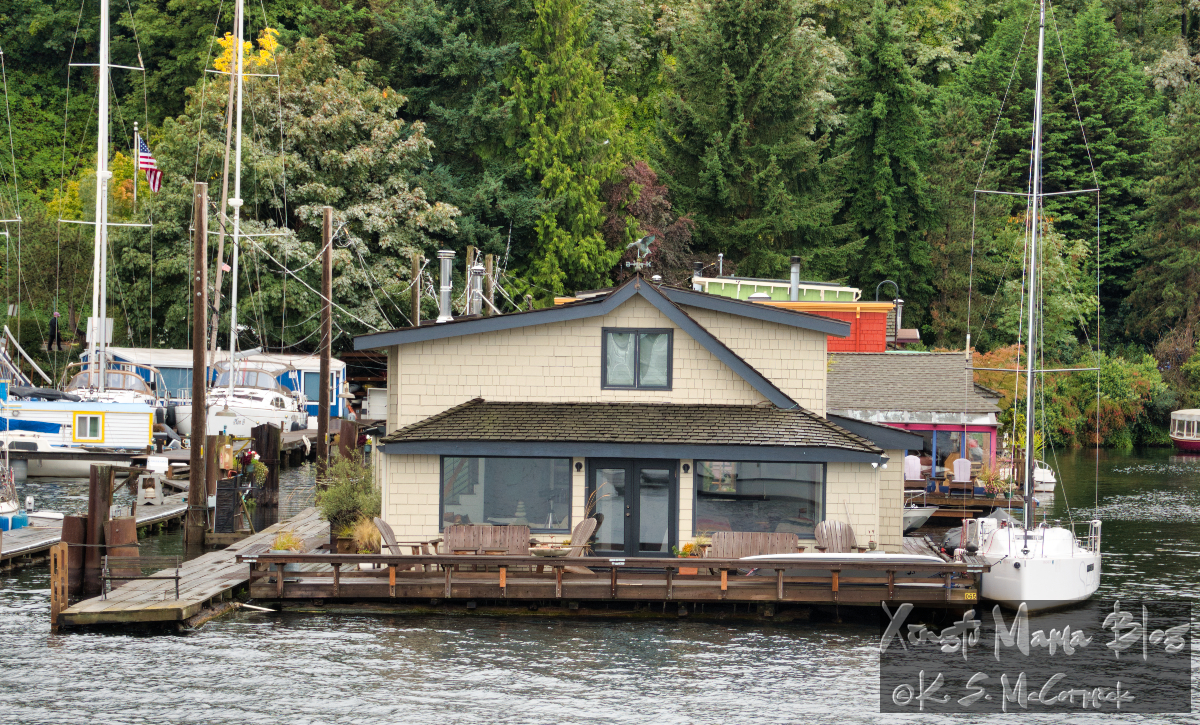 "I think this is the houseboat the guide said played a starring role in ""Sleepless in Seattle""."