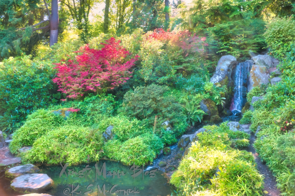Waterfall and changing foliage at the Kubota Garden in Seattle, Washington State.