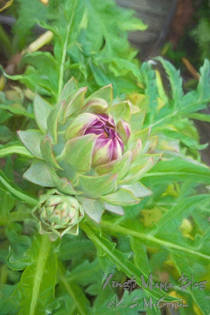 An artistic treatment in Topaz Studio 2 of a photo of a large artichoke ready to boom with a small sidekick who looks ready to eat.