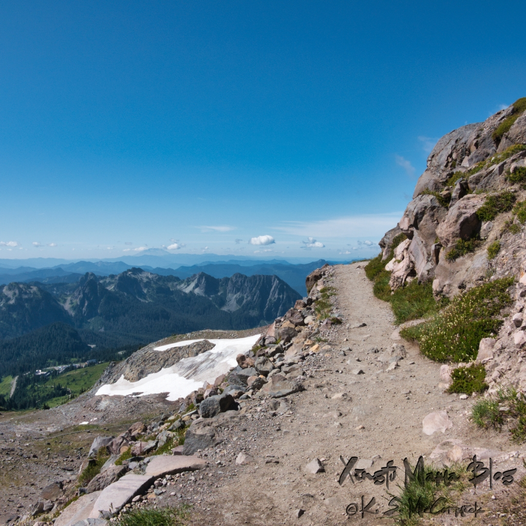 The Skyline Trail at Paradise on Mount Rainier in Washington State.