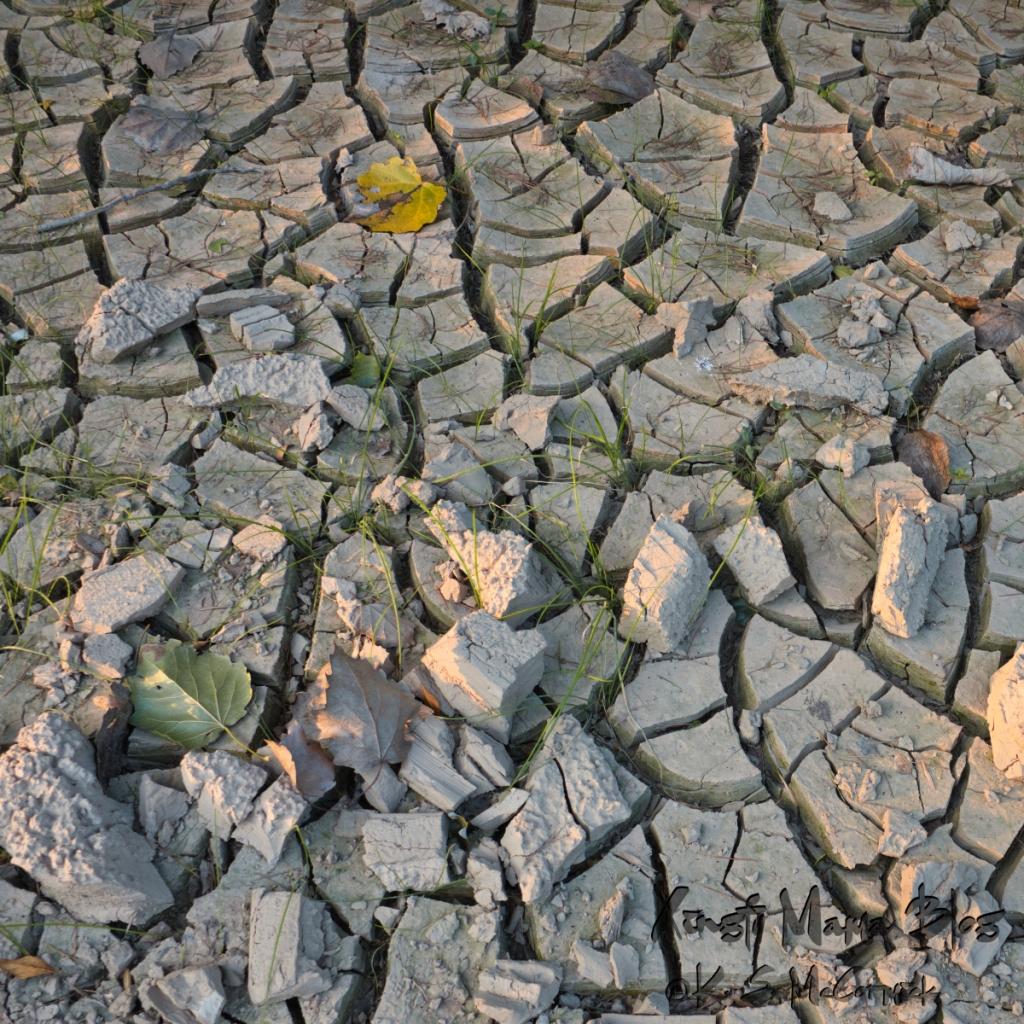 Cracked, dried mud.