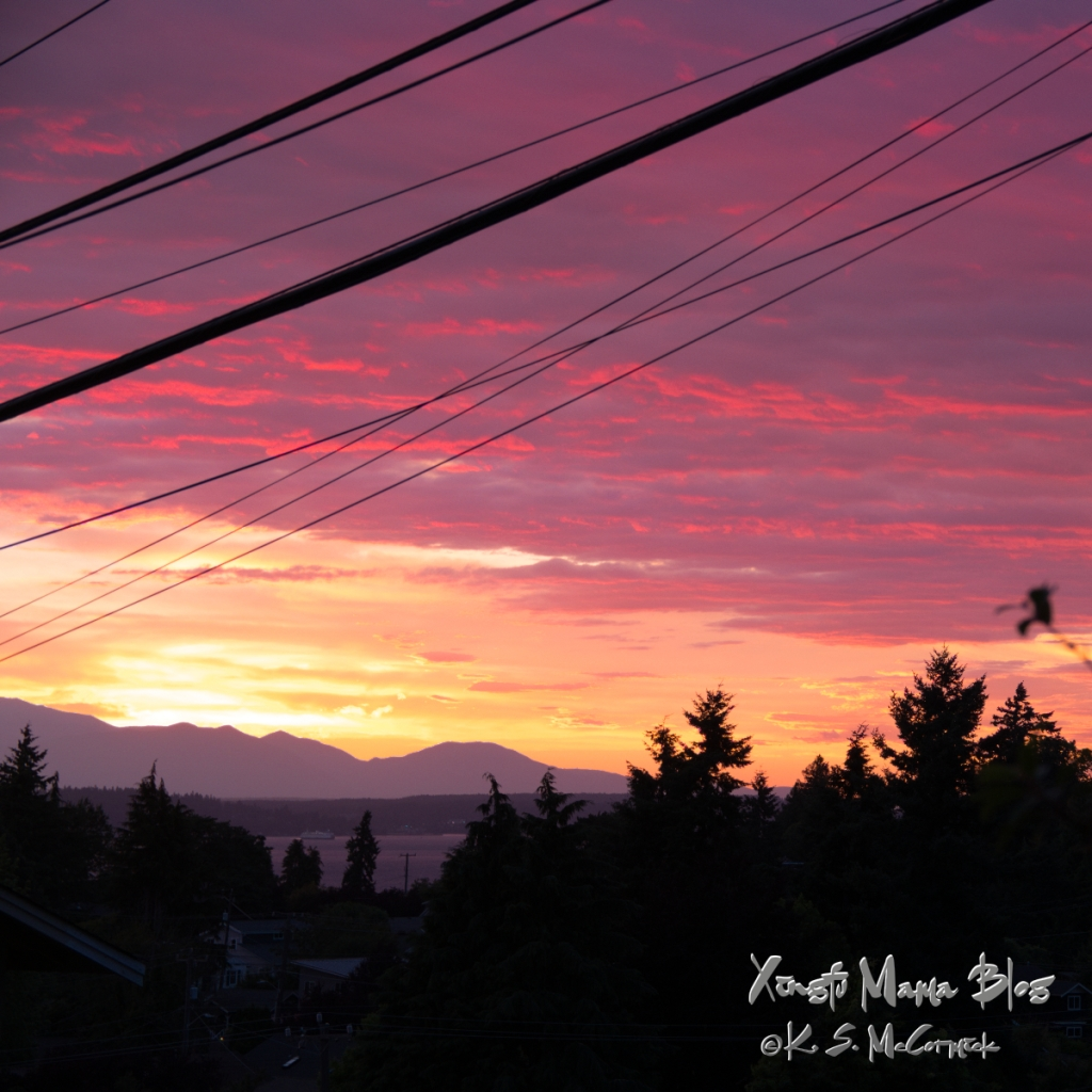 A beautiful sunset photo marred by power lines