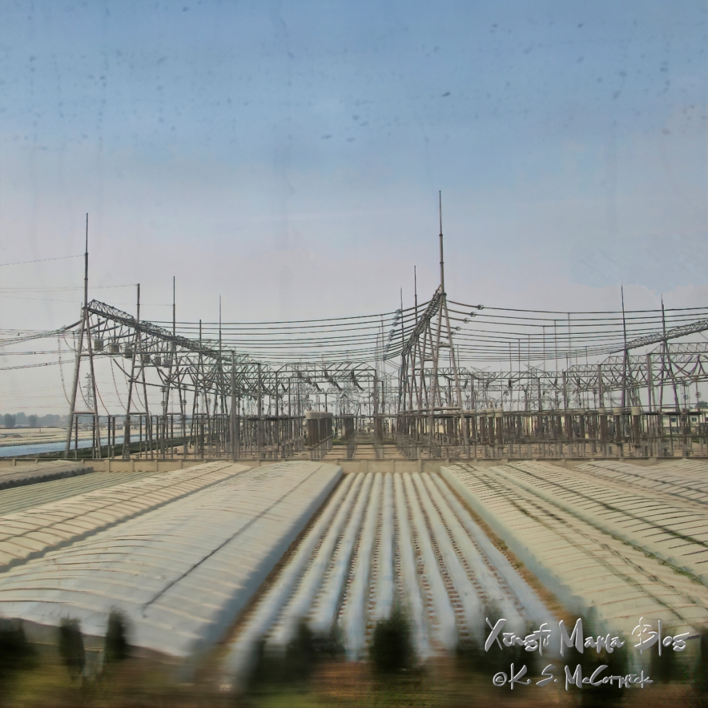 A square format image of green houses and a power station taken from a fast train in Shandong Province, China.