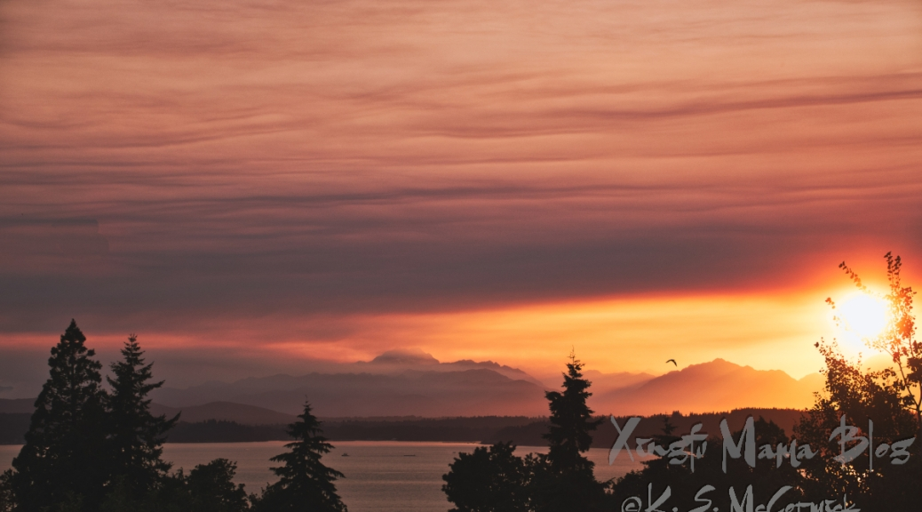 Smoke from wildfires in Britich Columbia caused the intriguing atmosphere and colors of this sunset over Puget Sound.