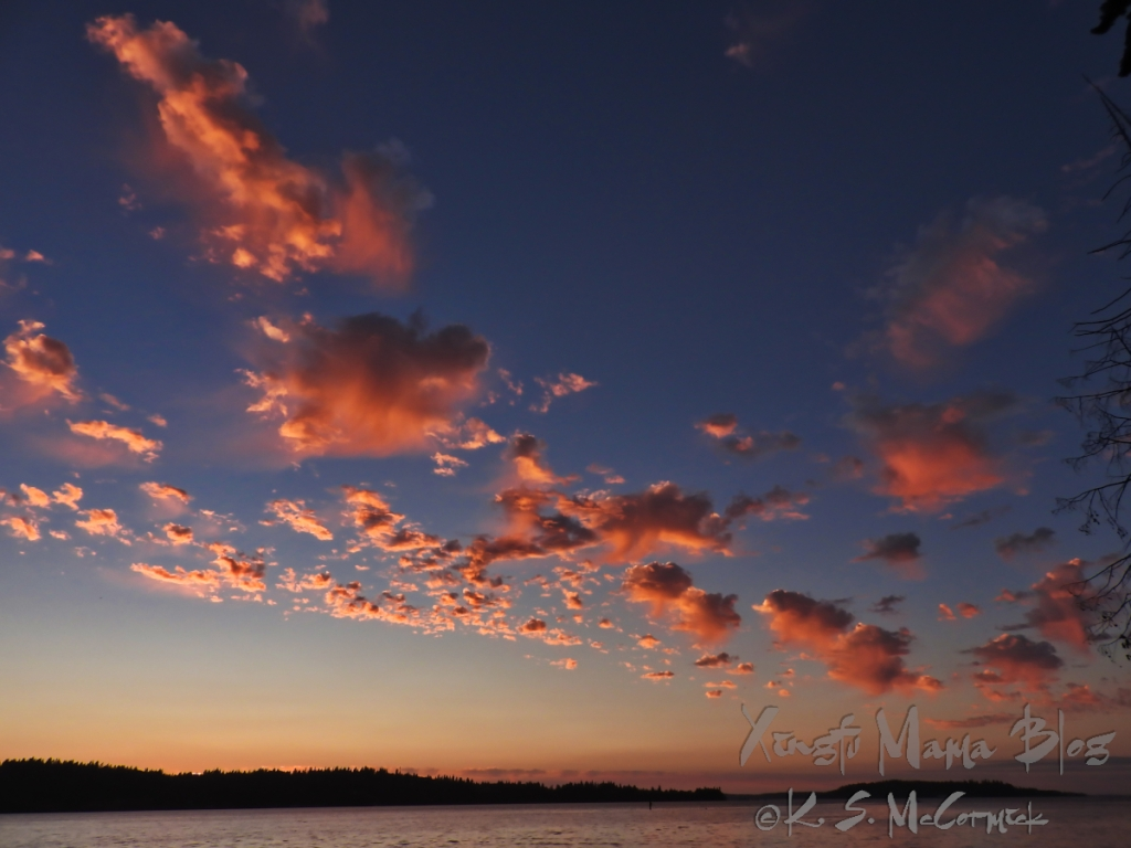 Puffy pink clouds reflect the light of the newly set sun. Photo taken on Vashon Island in Washington state.