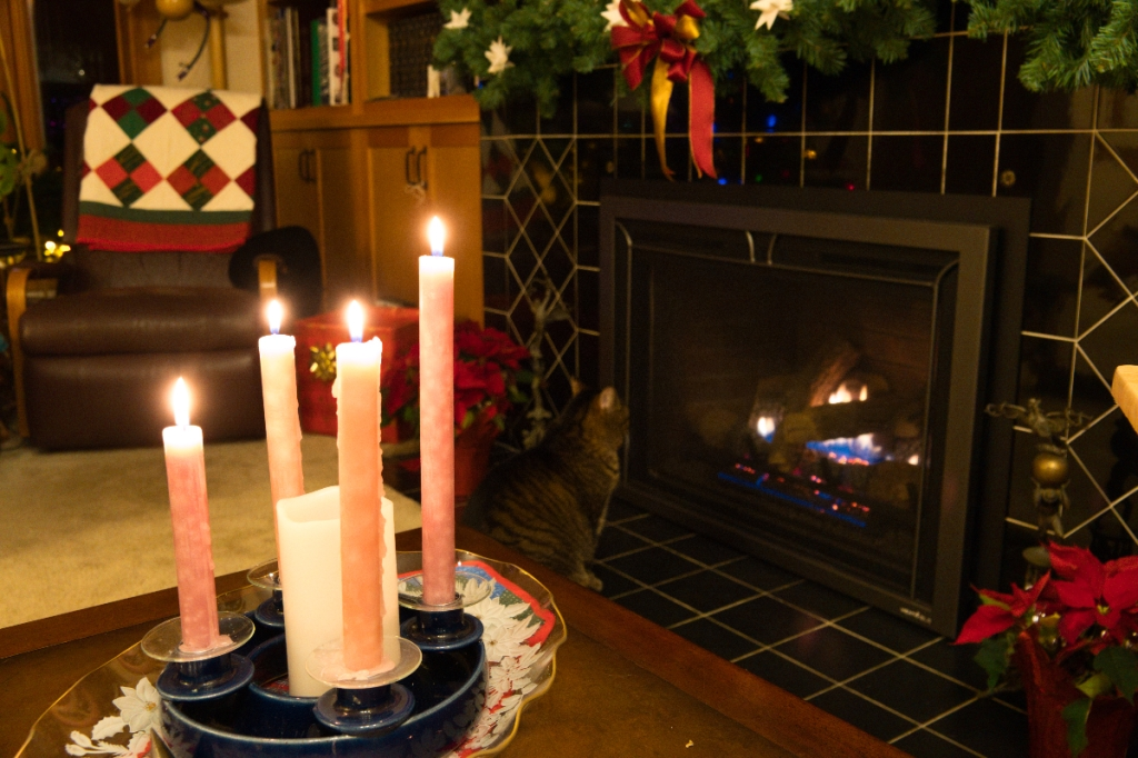 Almost Christmas: the four advent candles are lit. It's time for a peaceful evening by the fire with my cat.