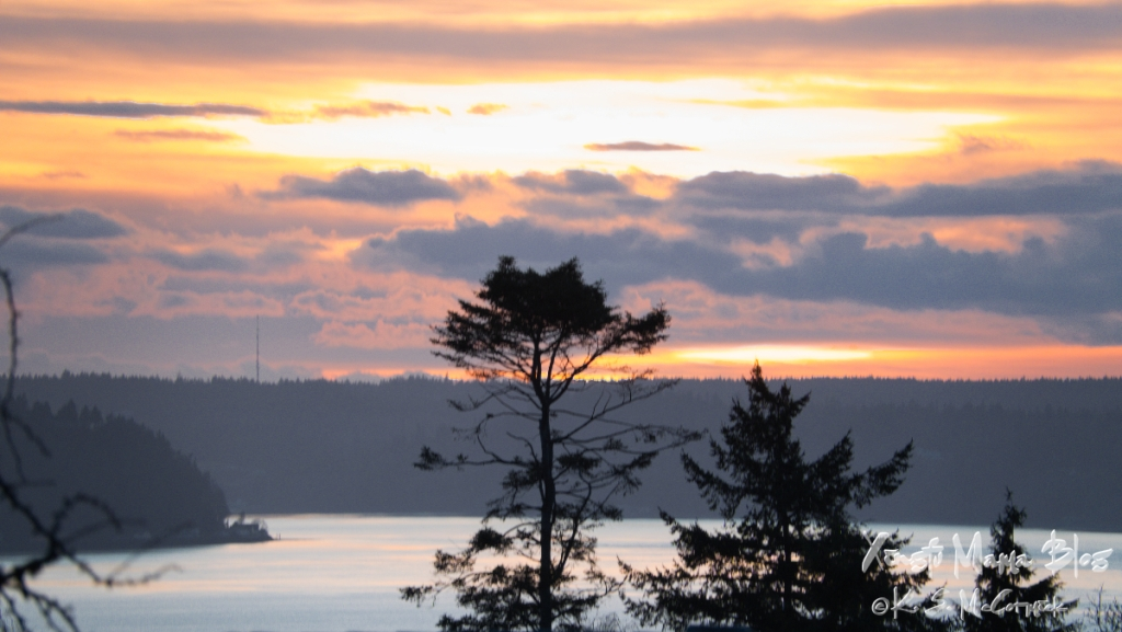Mystic winter sunset over Puget Sound with silhouettes of trees.