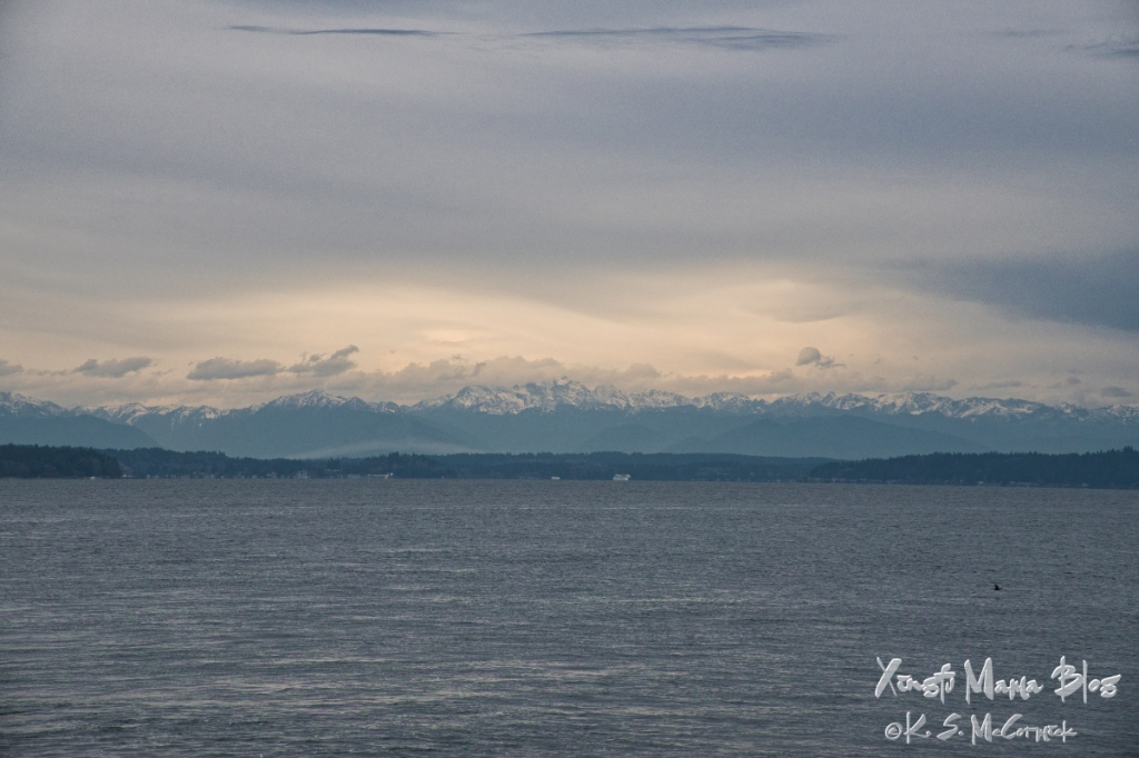 A view of Puget Sound and the Olympic Mountains, lit by a patch of sunlight that snuck through the clouds,from the Fauntleroy Ferry dock at midday in December.