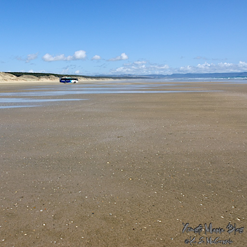 Photo of a tour bus on 90 mile beach at the north end of the north island of New Zealand.