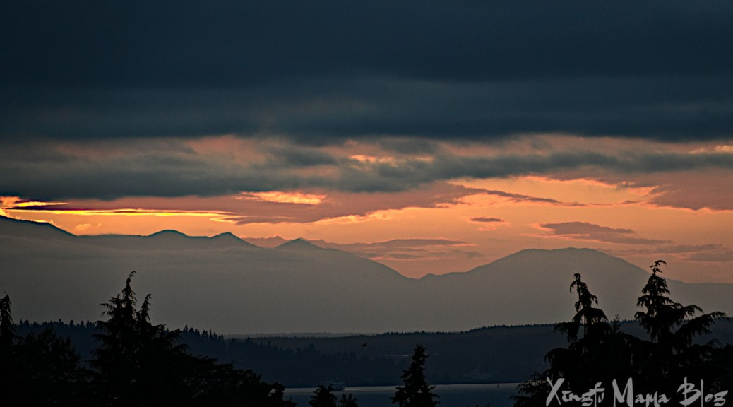 The Olympic Mountains just after sunset.