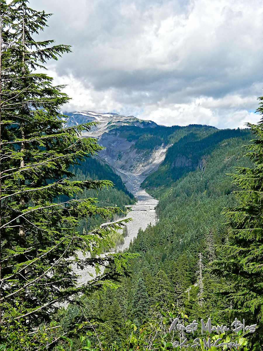 The valley carved out by the Nisqually Glacier on Mount Rainier.